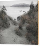 Lake Coeur D'alene 2 Wood Print