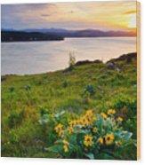 Lake Coeur D'alene Spring Wood Print