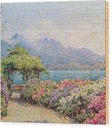 Lake Como From The Villa Carlotta Wood Print