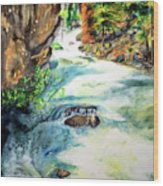 Lake Como Waterfall Wood Print