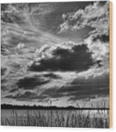 Lake Dora Black And White Wood Print
