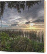 Lake Dora Wood Print