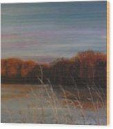 Quiet Lake Morning At Lake Dunn Village Creek State Park Ar Wood Print