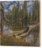 Lake Eleanor Wood Print