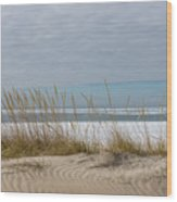 Lake Erie Ice Blanket With Sand Dunes And Dry Grass Wood Print