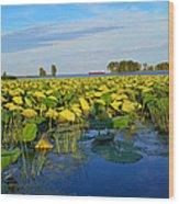 Pointe Mouilee Lake Erie Wood Print