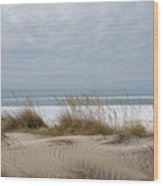 Lake Erie Sand Dunes Dry Grass And Ice Wood Print