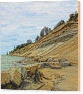 Lake Erie Shoreline Wood Print