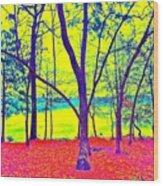 Lake Eyed Wood Print