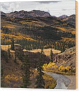 Lake Fork Of The Gunnison Wood Print