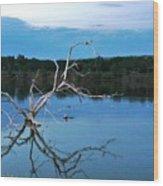 Lake Fryer Tree Wood Print