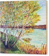 Lake Geneva Wood Print