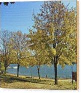 Lake George  12 Wood Print