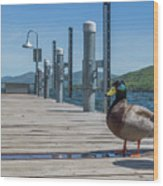 Lake George Duck Wood Print