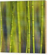 Lake Grass Wood Print