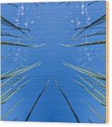 Lake Grass Reflection Wood Print