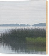 Lake Grasses Wood Print