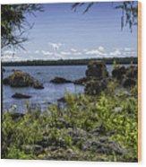 Lake Huron Cedarville Michigan Wood Print