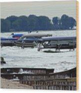 Lake Huron Shoreline Leading To Sand Point Wood Print