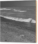 Lake Huron Windy Day 4 Bw Wood Print