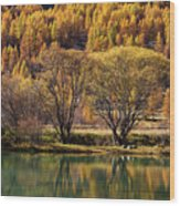 Lake In Autumn - 3 - French Alps Wood Print