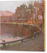 Lake In Bear Mountin Wood Print