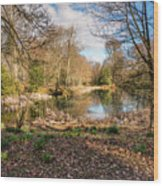 Lake In Early Springtime Woodland Wood Print