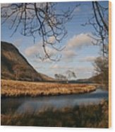 Lake In Glenveagh National Park No 1 Wood Print