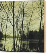 Lake In Winter Wood Print