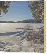 Lake In Winter Wood Print