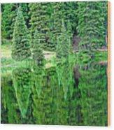 Lake Irene 12-1 Wood Print
