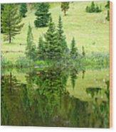 Lake Irene 12-2 Wood Print