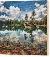 Lake Island View Wood Print