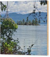 Lake Islet Wood Print