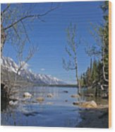 Lake Jenny Wood Print