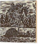 Lake Leek Wood Print by Al Goldfarb