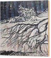 Lake Louise In Winter Wood Print