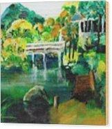 Lake Malibu Wood Print