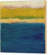 Lake Michigan Beach Abstracted Wood Print by Michelle Calkins