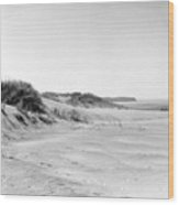 Lake Michigan Shoreline IIi Wood Print