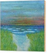 Lake Michigan Sunrise 02132016 Wood Print