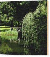 Lake Mirror Wood Print