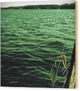 Lake Murray Lure Wood Print