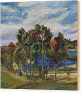 Lake Murray Wood Print