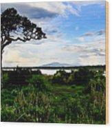 Lake Ndutu Shores Wood Print