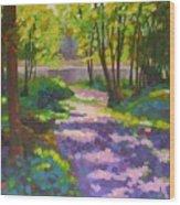 Lake Of The Hills Wood Print