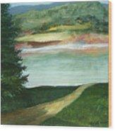 Lake Path Wood Print