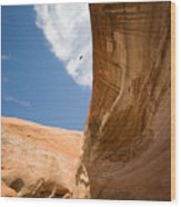 Lake Powell 1 Wood Print