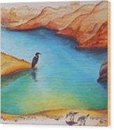 Lake Powell Birds Wood Print