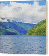 Lake Quinault Washington Wood Print